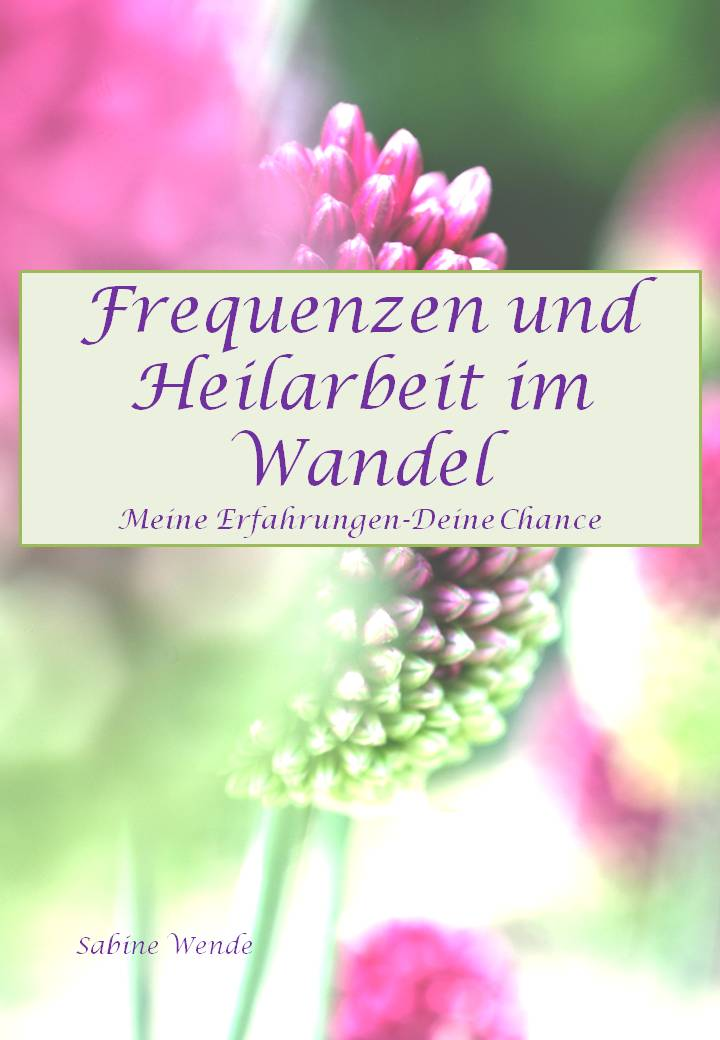 Deckblatt Ebook Wende